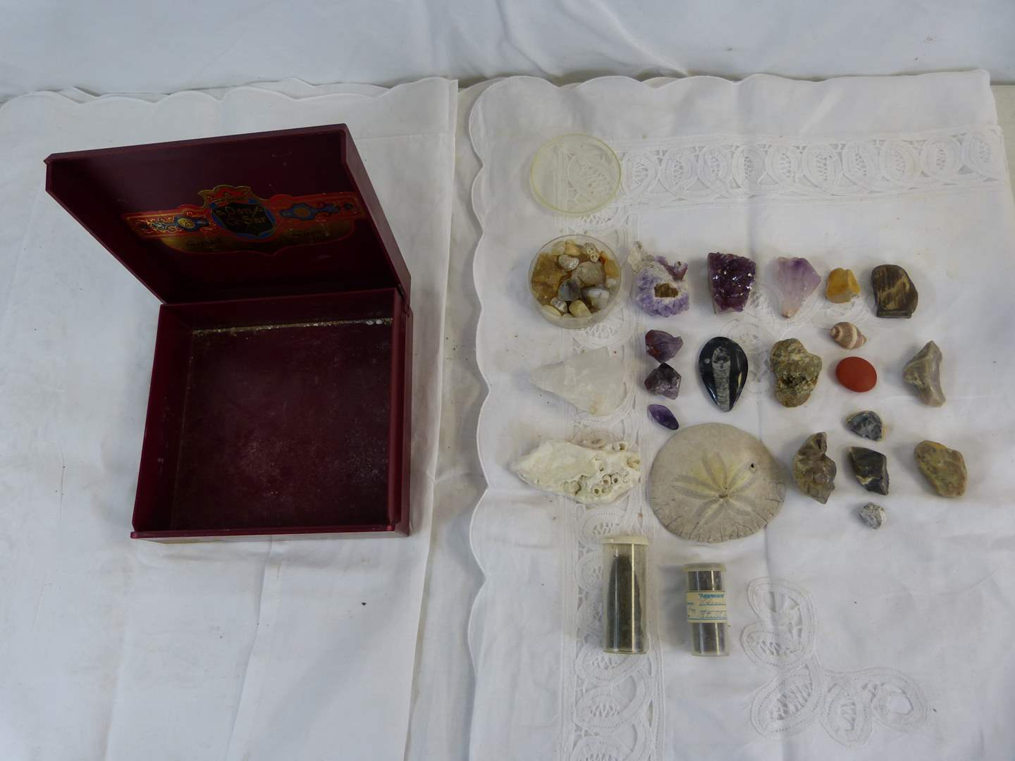 Lot # 3 Nice collection of gem stone rocks & sanddollar (main image)