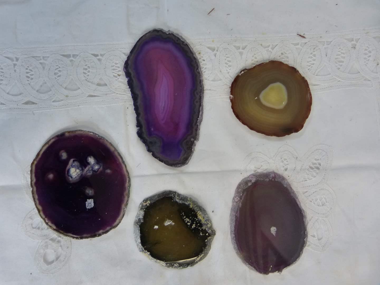 """Lot # 48 Lot of Agate Polished Stone Slabs (AMAZING) 6"""" average size (main image)"""